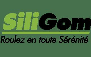 Logo de l'entreprise Silligom
